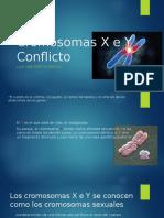 Cromosomas X e Y Conflicto