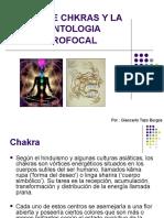 lossietechkrasylaodontologianeurofocal-090330001846-phpapp01