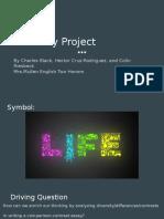 diversity project