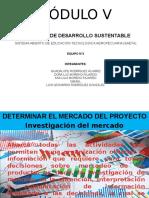 Determinar El Mercado Del Proyecto