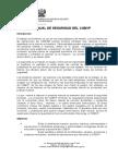 Manual de Seguridad de CGBVP 2009