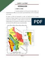 233965108-Trabajo-Final-Campo-La-Pena.docx