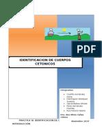 Practica Cuerpos Cetonicos 1