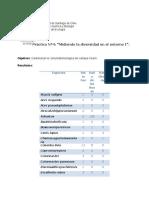 Informe 4 de eco.docx