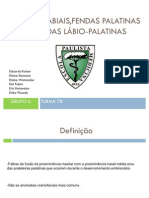 Fendas Labiais e Palatinas Seminario 78