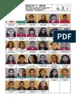 mosaico 6°-1-2016.pdf