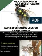 ENTOMOLOGIA FORENSE-2013