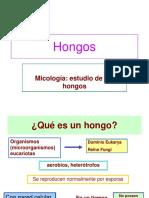 A. Generalidades de Los Hongos