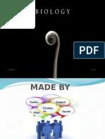lifeprocess-140823022842-phpapp02