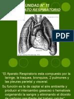 Inst. Quirúrgica - 1º Año - Anatomía - Unidad Nº11 - Aparato Respirtorio
