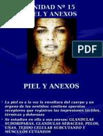 Inst. Quirúrgica - 1º Año - Anatomía - Unidad Nº15 - Piel y Anexo