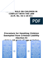Report Revised Rule on Children in Conflict With the Law