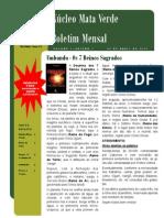 Boletim do Núcleo Mata Verde - 04/2010
