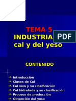 TEMA PI5