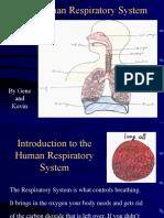 Respiratory2.ppt