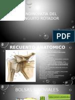 tendinopatia de manguito rotador