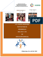 Pautas Para Educación Especial Cte y Ctz