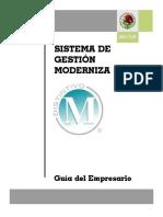 1.- Guía de Implantación SGM Empresario 2008