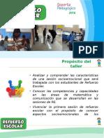 Caracteristicas de Las Sesiones de RE y Aplicativo Pruebas