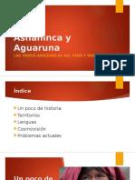 Asháninca y Aguaruna