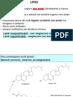 presentazione lipidi