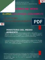 Ministerio Del Medio Ambiente