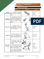 Informativa5 - Reprodução Assexuada(2)