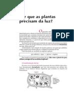 Telecurso 2000 - Biologia 26