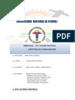 Digestivo Fisiología Informe Práctico