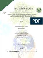 guia-indeci-informe de investigacion.docx