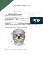 Estudo Dirigido de Anatomia-Crânio