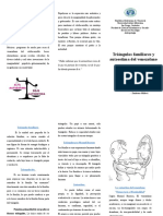 Trictico de Triangulos Familiares y Autoestima Del Venezolano