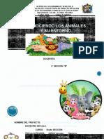 Proyecto de Animales de 2C