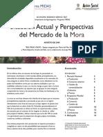 Mercado_Situacion_Actual_y_Perspectivas_MORA.pdf