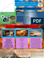 Ambiente y Minería