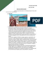 Comunicación Visual_Parcial Domiciliario_Sara Collar