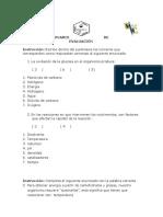 Cuestion de Autoev A17