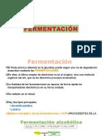 8. FERMENTACIÓN