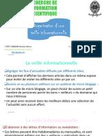 Organisation d'Une Veille Informationnelle