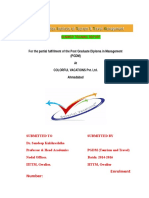 main Summer Internship Project Report .docx
