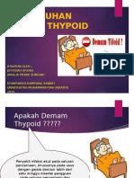 Penyuluhan Typhoid