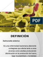salmonella-100608012629-phpapp01.pptx
