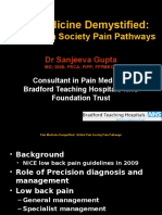 Pain Pathways Presented in November 2015.pptx