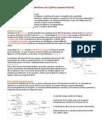 Lipoproteínas y Dislipidemias