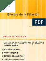 7-2016 Efectos Filiación
