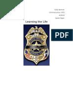 criminal justice career paper