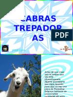 Cabras_trepadoras (1)