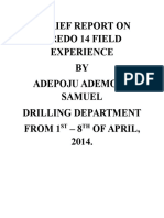 A Brief Report on Oredo 14 Field Experience