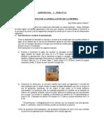Agrotecnia i Tema Nº 13