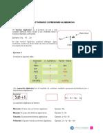pauta lenguaje algebraico.doc